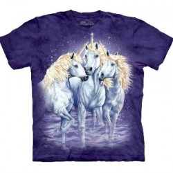Tee shirt enfant Licorne - Find 10 unicorns
