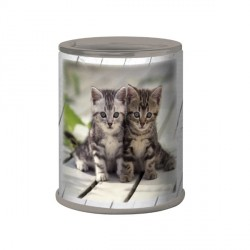 Taille crayons Chatons