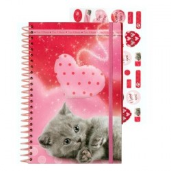 Carnet Chat coeur + stickers
