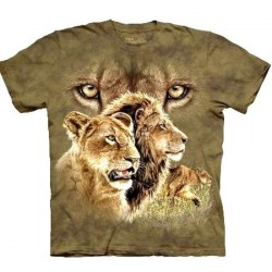 Tee shirt Lion - Find 10 Lions