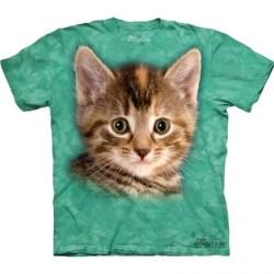 Tee shirt Chat - Striped Kitten