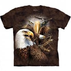 Tee shirt Aigle - find 14 Eagles