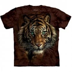 Tee shirt Tigre - Tiger Prowl