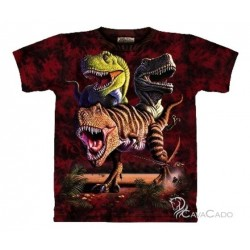 Tee shirt enfant Dinos - Rex Collage 13/14 ans