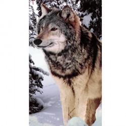 Serviette de plage Loup dans la neige