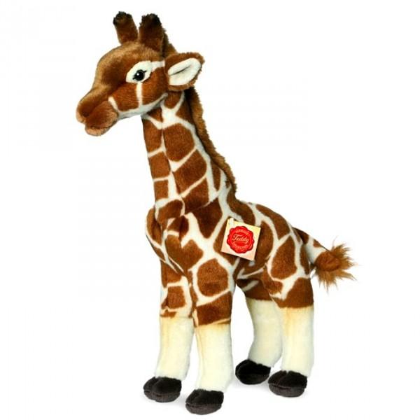 girafe en peluche un cadeau tr s appr ci des enfants cavacado. Black Bedroom Furniture Sets. Home Design Ideas