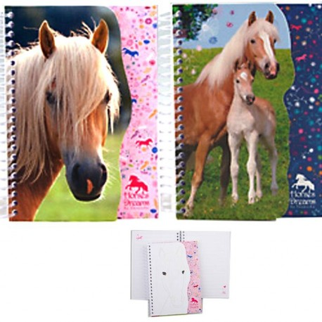 Lot de 2 carnets motif cheval