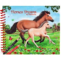 Petit Album de coloriage chevaux