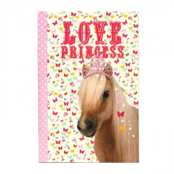 Lot de 3 Carnets Poney Princesse A6