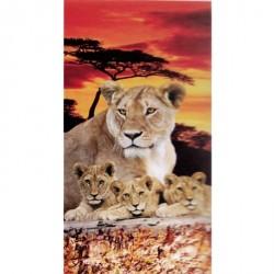 Serviette de plage Lions au crepusule