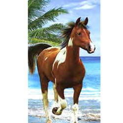 Serviette de plage Cheval Pie