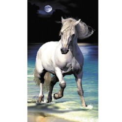 Serviette de plage Cheval Lune