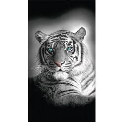 Serviette de plage Tigre du Bengale - 75 x 150 cm