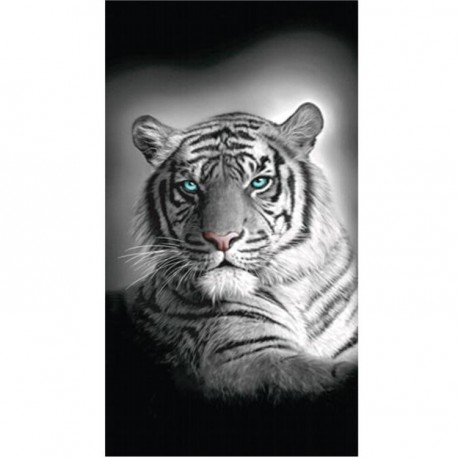 Serviette de plage Tigres du Bengale - 75 x 150 cm