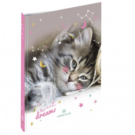 Classeur Chat Dream