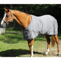 chemise coton Performance