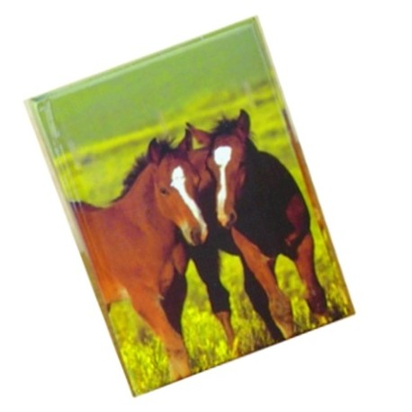 Journal intime chevaux