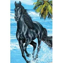 Grand Drap de plage Cheval noir -150 x 200