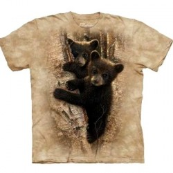 Tee shirt enfant Ours - Curious Cub