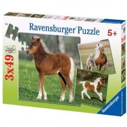Puzzle cheval poulain - 3 x 49 pièces