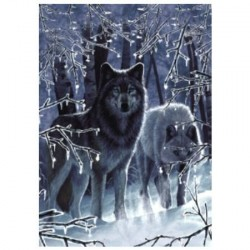 Carte + enveloppe - Loups en forêt