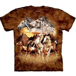 Tee shirt enfant Cheval - Find 15 Horses
