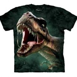 Tee shirt enfant T-rex rugissant 13/14 ans