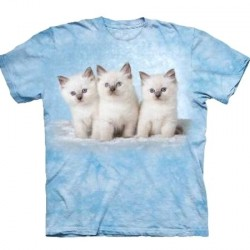 Tee shirt enfant Chat - Cloud kittens
