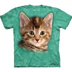 Tee shirt Chat - Striped Kitten