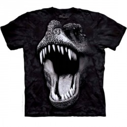 Tee shirt enfant Dino - Big Face Rex