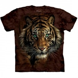 Tee shirt Tigre - Tiger Prowl