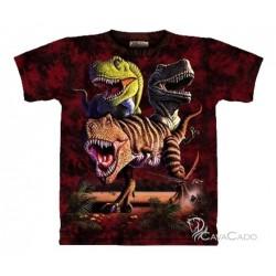 Tee shirt enfant Dinos - Rex Collage 13/14 ans