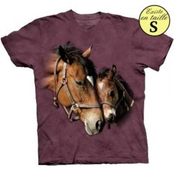 Tee shirt Chevaux deux coeurs - Taille M