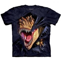 Tee shirt enfant Dino - T-Rex menacant