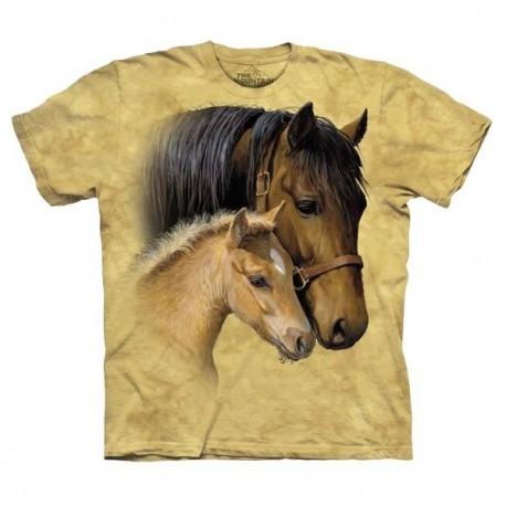 Tee shirt Chevaux Tendresse