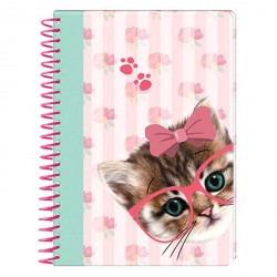 Carnet Chat Sweet Kitten A6 et stickers