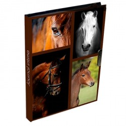 Journal intime Cheval Passion marron